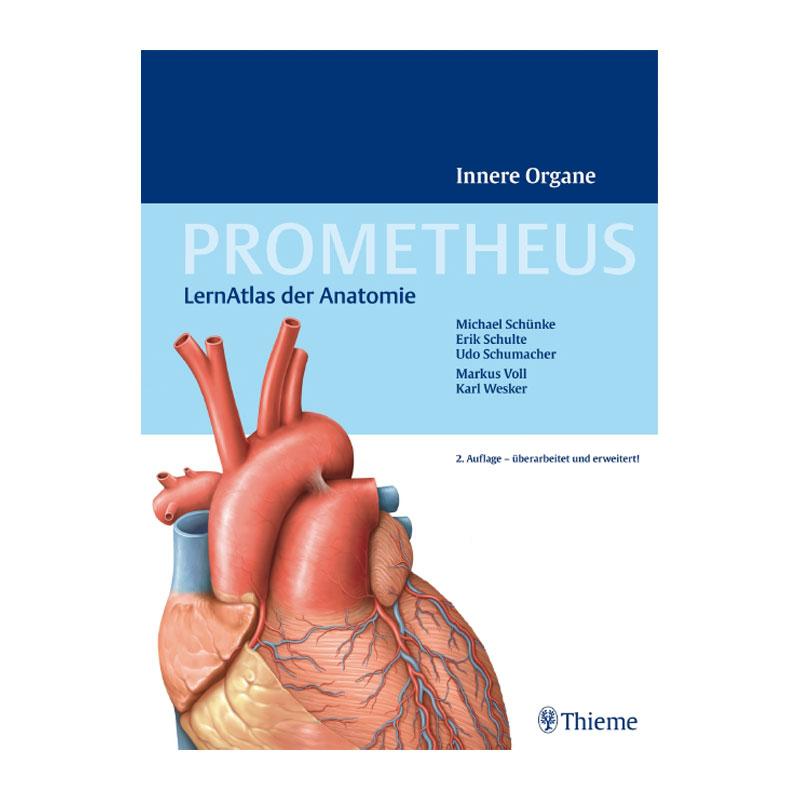 Lehrmittel - Anatomie - Bücher Physio-Bedarf
