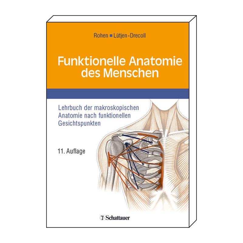 Nett Funktionelle Anatomie Des Menschen Galerie - Anatomie Ideen ...